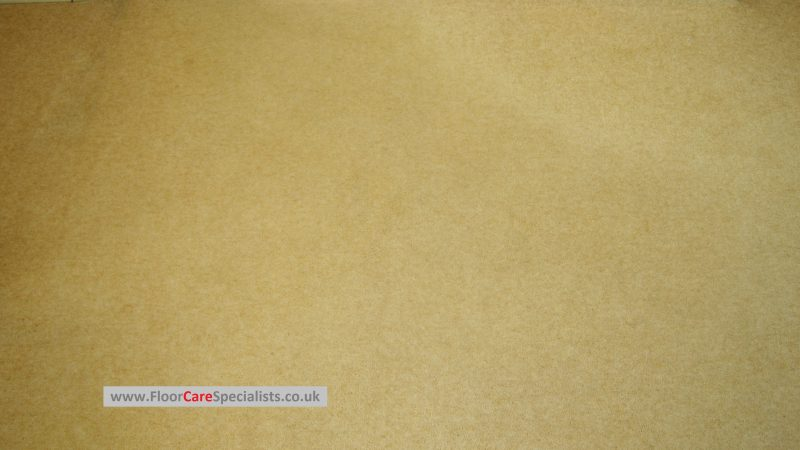 Carpet Cleaning in Nottingham - www.FloorCareSpecialists.co.uk